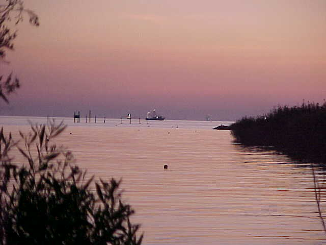 The Gulf of Mexico as seen from the camp site - sunset Thursday 11/6/03.