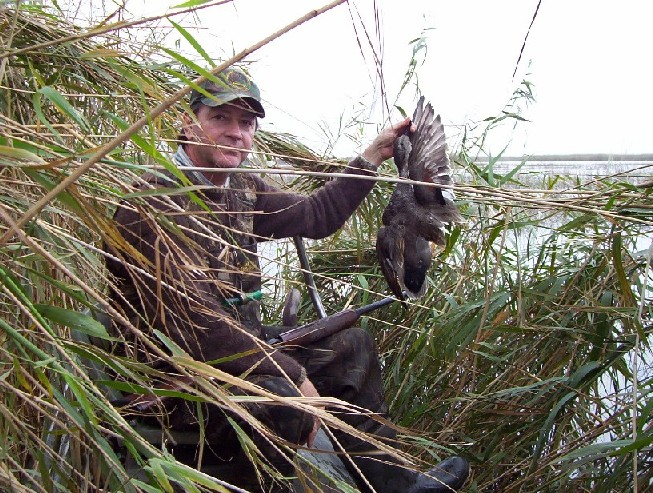 Hidden in the canes, Joe shows off a Gadwall.  High tide and high times - one of the best hunts ever.